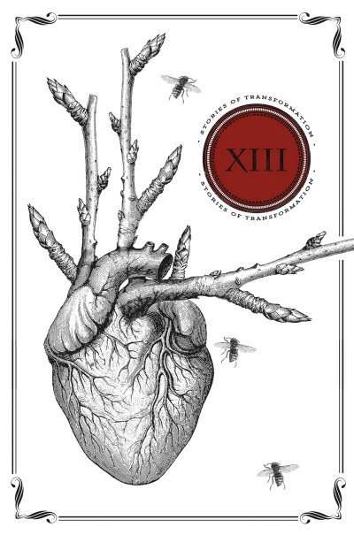 XIII_cover